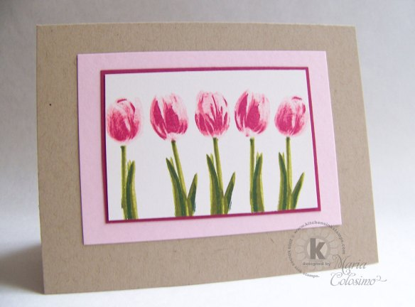 pink-tulips-in-a-row