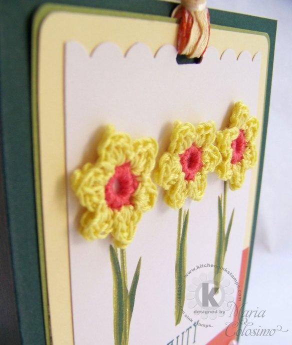 daffodills-close-up