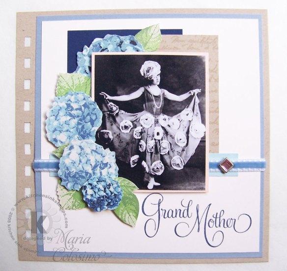 Hydrangea---Ann