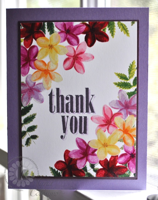 Tropical Flowers Plumerias Thank You Card