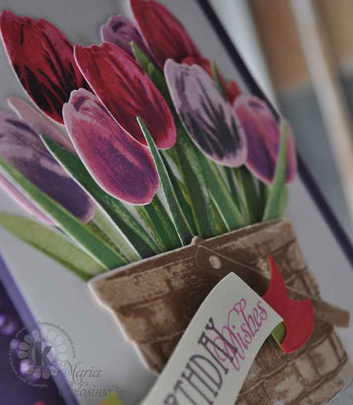 Basket-of-Tulips-CLSUP