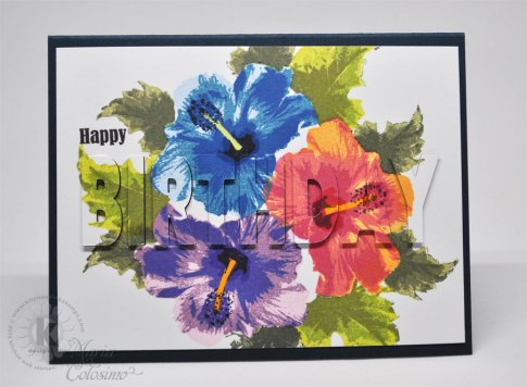 Hibiscus-eclips-card