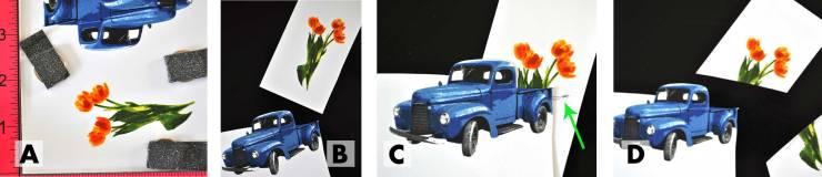 Tulips-in-Truck