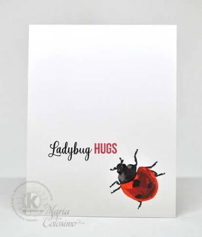 Lady-Bugs-Hugs